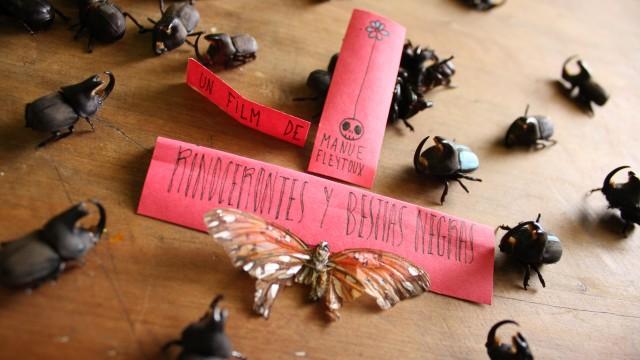 Il était une fois deux scarabées rhinocéros qui vivaient dans un cirque. Ils s'aimaient vraiment vraiment beaucoup, mais n'étaient jamais d'accords sur rien. Lui vouait vivre tranquille, mais elle portait une bête noire qui grondait dans son cœur…   - Réalisation Manue Fleytoux – Production Ciné 2000 – 8min – 2014