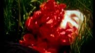 Récit d'un bouleversement intérieur qui conduit jusqu'à l'intérieur du corps. Le corps n'est pas un lieu séparé du monde, et ici, s'y condensent avec violence certaines des questions redoutables qui se posent aux humains d'aujourd'hui.  réalisation Alice Heit – 13min – 2012