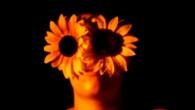 Au bord du gouffre, pris d'intensités qui nous dépassent, nous perdons pied, nous tournoyons… l'indiscible habite mon corps et mon âme. « Vous êtes sur terre, c'est sans remède ! » S. Beckett Ce film est une expérimentation en temps limité, tourné et monté en trois jours à Liège, dans une usine de chaux et un cimetière de [...]