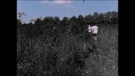 Bruxelles, 2048 : le j**** n'existe plus. Interdit, oublié, disparu? Un petit groupe clandestin se réunit pour tenter de le retrouver dans des images d'archives. Maud Girault, Joachim Soudan et Jerôme Zahno / AJC! / CC-BY-NC-SA / 18min / 2020