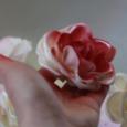 De son Arménie natale aux gâteaux colorés qu'elle confectionne à Pamiers, Madi nous dévoile son parcours. Celui d'une femme déterminée, qui tisse des liens sucrés dans l'écoute et le partage.      Greta Loesch et Chloé Jacquemoud / Caméra au poing – La Télé Buissonnière / 10′ /  2019